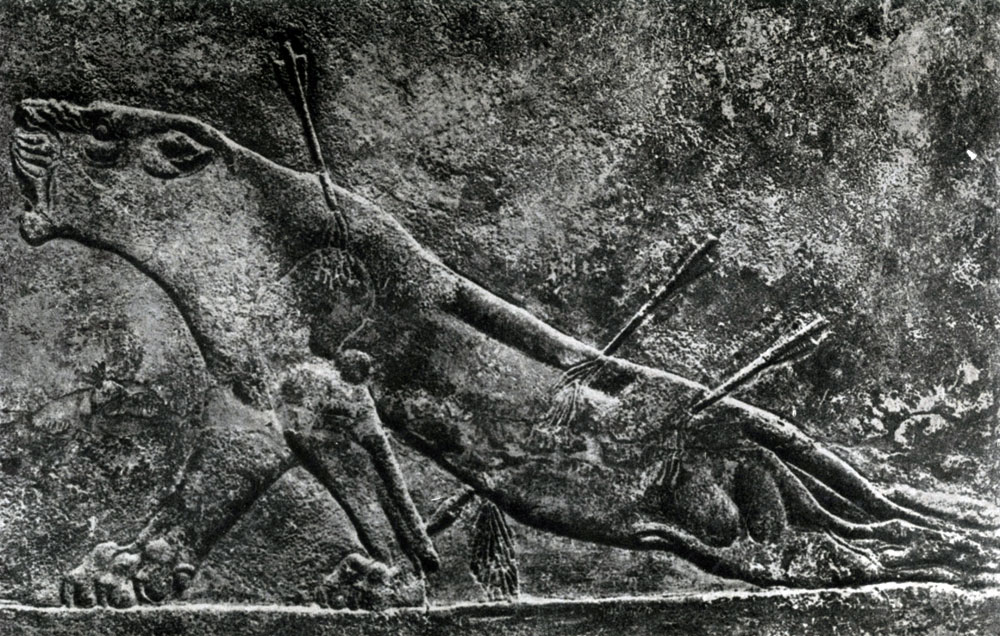 32. Раненая львица. Рельеф из дворца Ашшурбанипала в Ниневии. Алебастр. Середина 7 в. до н. э. Лондон. Британский музей.